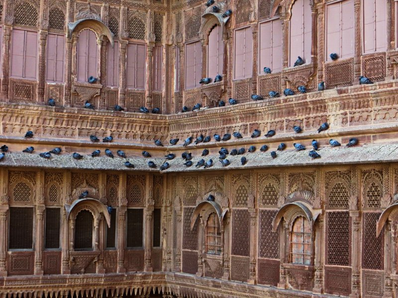 Backpacking in India: Day 8 (Jodhpur - Umaid Bhavan Palace - Mehrangarh Fort) - Foto 11